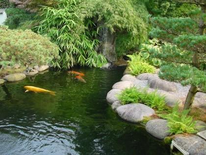 Japanischer garten teich for Gartenteich bauen lassen