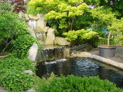 Japanischer garten teich for Naturteich anlegen