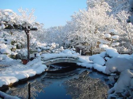 Garten Im Winter japanischer garten winter